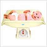 Baby Weighing Scale Pan Type